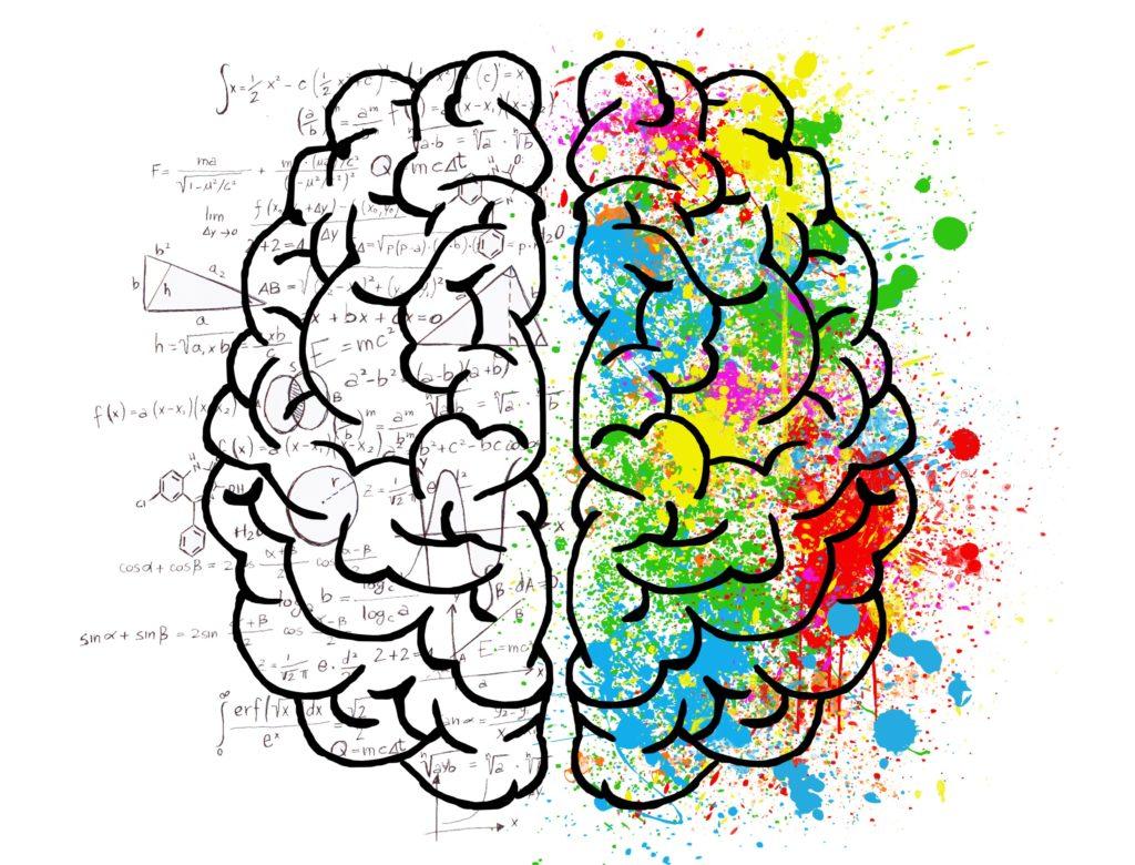 Imagem representativa dos dois lados do cérebro