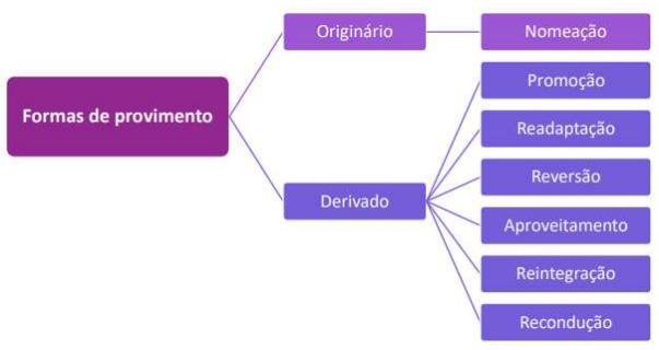 Formas de provimento direito administrativo