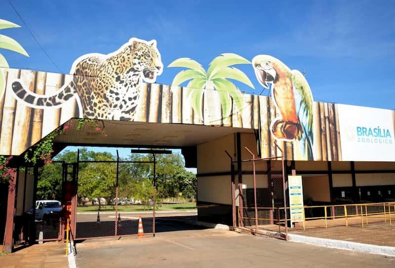 Cronograma do concurso Zoológico de Brasília